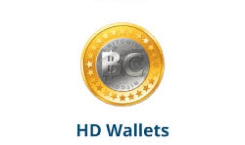 What Are HD Wallets? [Deterministic Wallet]